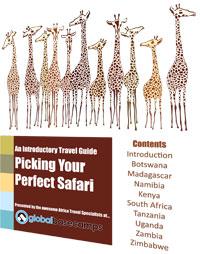 Guide: Picking Your Safari Destination